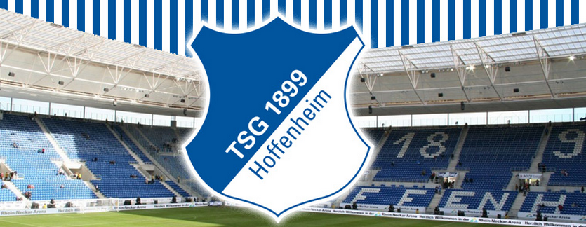 Image result for hoffenheim