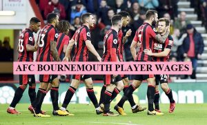 AFC Bournemouth players salary 2018-19 (+Latest Contract)