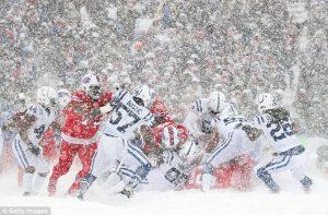 BuffaloBills VsIndianapolis Colts: Live streaming, Match Preview