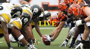 Pittsburgh Steelers Vs Cincinnati Bengals: Live stream links to watch